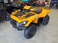 2020 Kawasaki BRUTE FORCE 750 4X4I EPS ATVs and Utility Vehicle