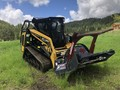 2019 ASV RT-120 Forestry Skid Steer