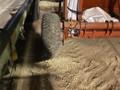 Renn RGB12 Grain Bin
