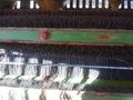 2005 John Deere 7460 Cotton Equipment