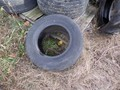 Firestone 11L15 Wheels / Tires / Track