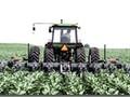 2017 Hiniker 6000 Cultivator