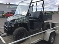 2010 Polaris Ranger EV ATVs and Utility Vehicle