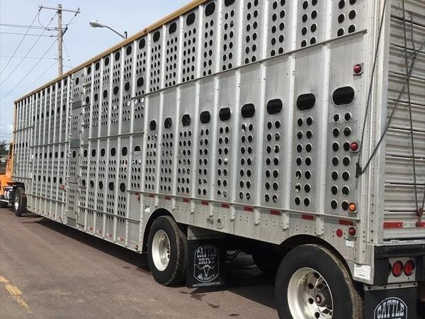 2007 Merritt Cattle pot Livestock Trailer