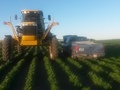 2005 Ag-Chem 1074 Self-Propelled Sprayer