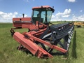 1993 Case IH 8820 Self-Propelled Windrowers and Swather