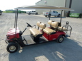 2011 3530 TXT GAS ATVs and Utility Vehicle