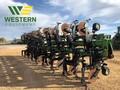 2016 B&H 9100-1630/50 Cultivator