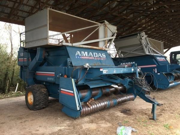 2003 Amadas 9997 Peanut