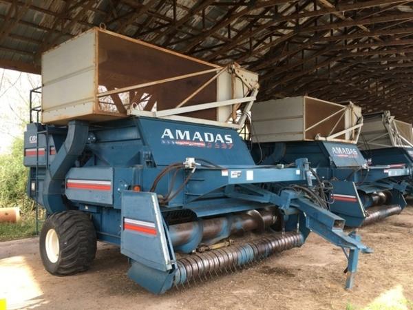 2000 Amadas 9997 Peanut