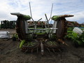 2006 Claas RU600 Forage Harvester Head