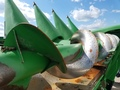 2009 John Deere 608C Corn Head