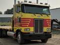 1999 Peterbilt 365 Semi Truck