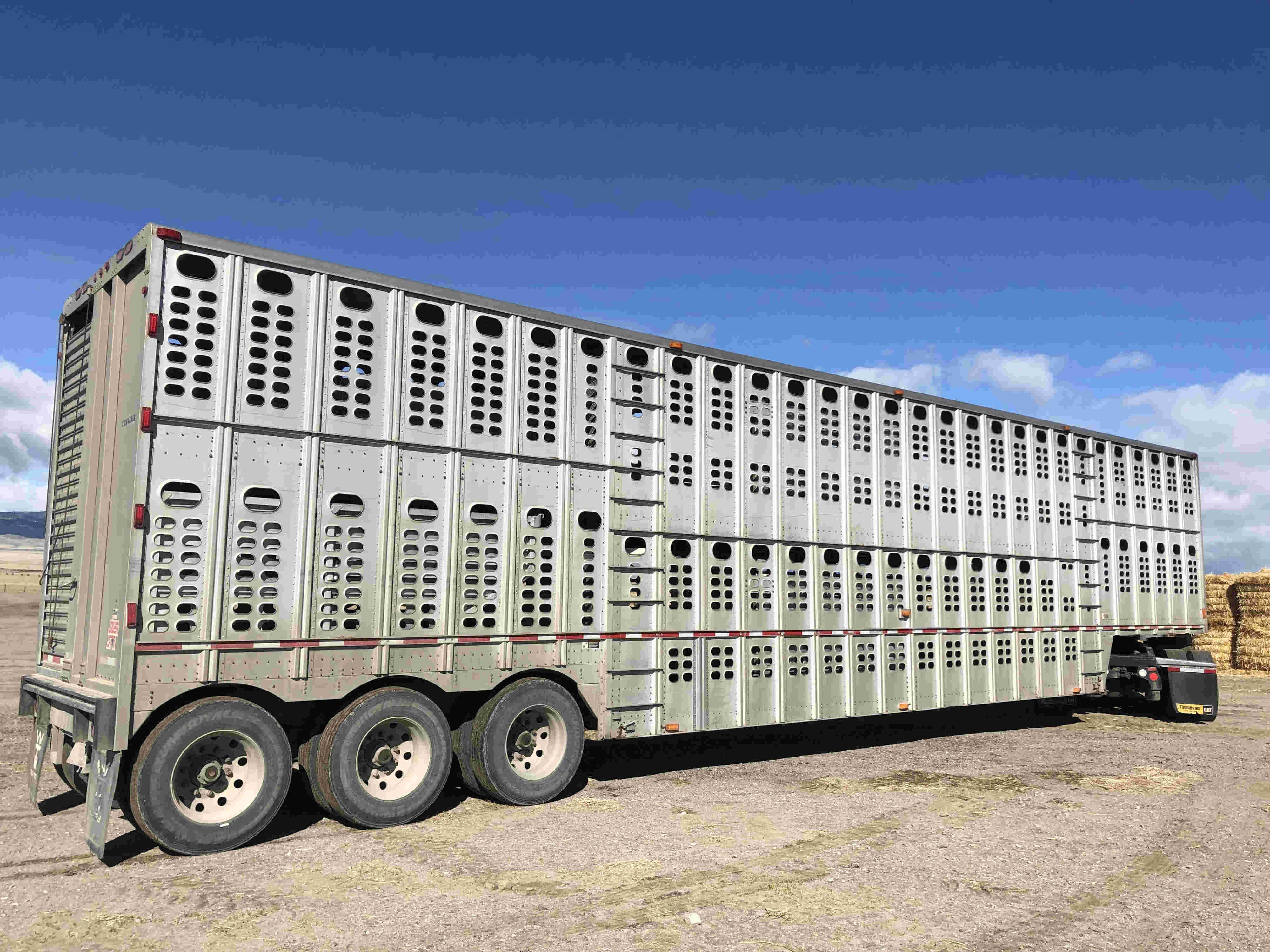 2010 Wilson 53' Livestock Trailer
