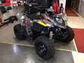2020 Polaris Phoenix 200 ATVs and Utility Vehicle
