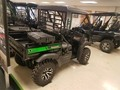 2019 Kawasaki MULE SX 4X4 FI ATVs and Utility Vehicle